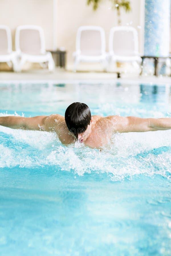 在水池的肌肉英俊的男性游泳 库存照片