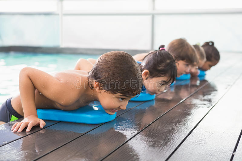 在水池的逗人喜爱的游泳类 免版税库存照片