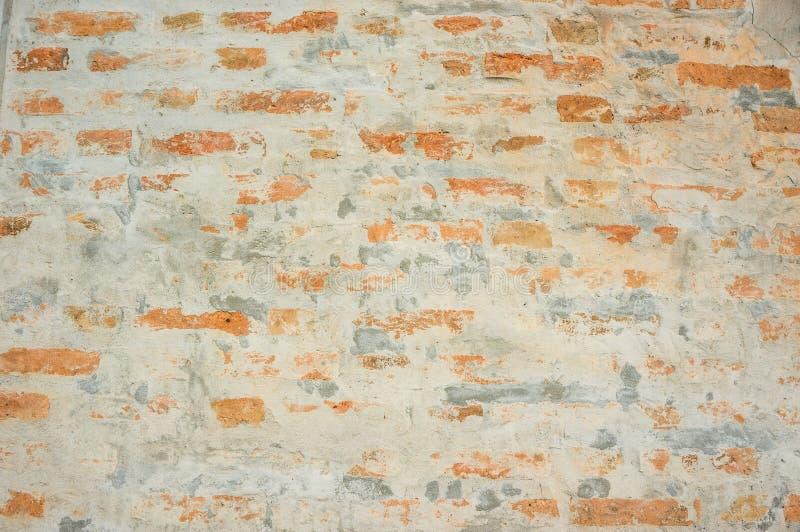 在水泥墙壁上的布朗砖 免版税库存图片