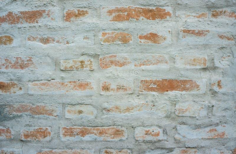 在水泥墙壁上的布朗砖 库存照片