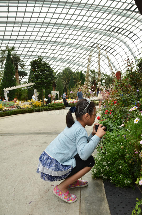 Download 在滨海湾公园的花圆顶在新加坡 编辑类库存照片. 图片 包括有 子项, 旅游业, 本质, 吸引力, 拱道, 结构树 - 59104083