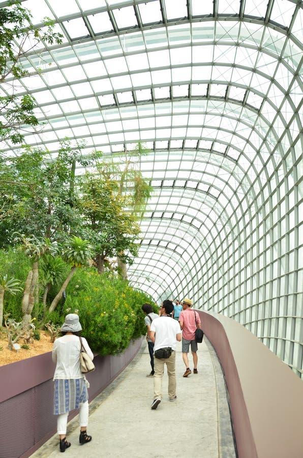 Download 在滨海湾公园的花圆顶在新加坡 编辑类图片. 图片 包括有 本质, 雕塑, 五颜六色, 农场, 天空, 布琼布拉 - 59104090