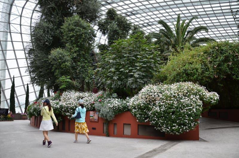 Download 在滨海湾公园的花圆顶在新加坡 编辑类图片. 图片 包括有 beautifuler, 聚会所, 雕塑, 现代 - 59104185