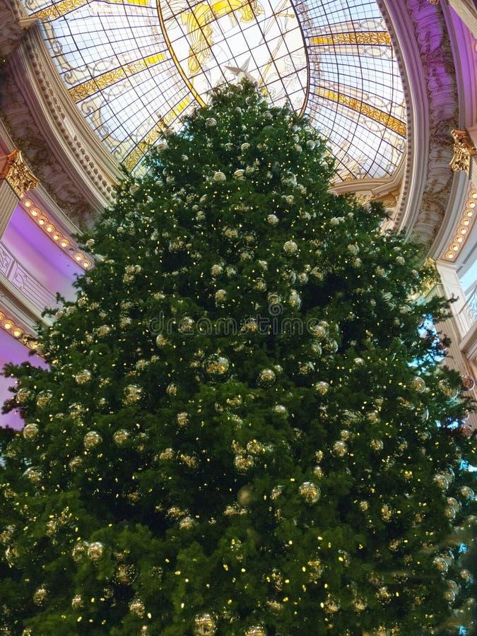 在购物中心的巨大的圣诞树 图库摄影