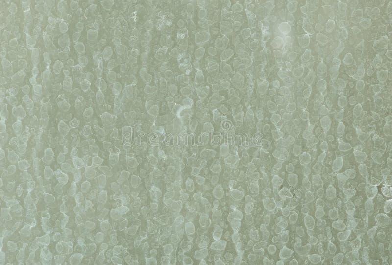 在玻璃墙上的干燥水污点 免版税库存照片