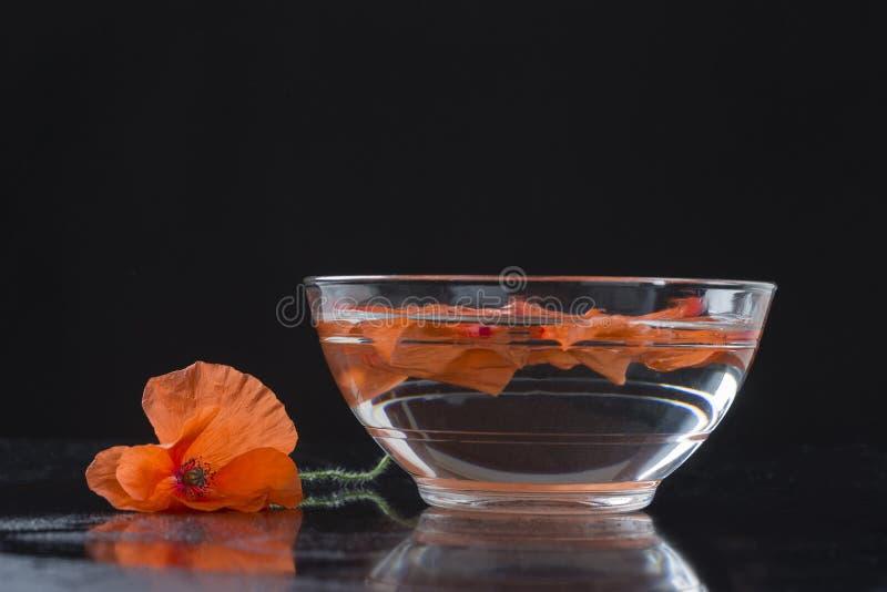 在玻璃杯子的鸦片 免版税库存图片