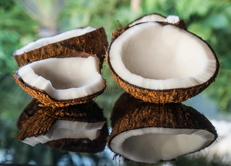 在黑玻璃桌上的椰子被隔绝在被弄脏的棕榈树背景 免版税库存照片