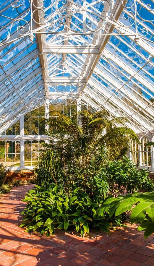玻璃庭院温室 库存图片