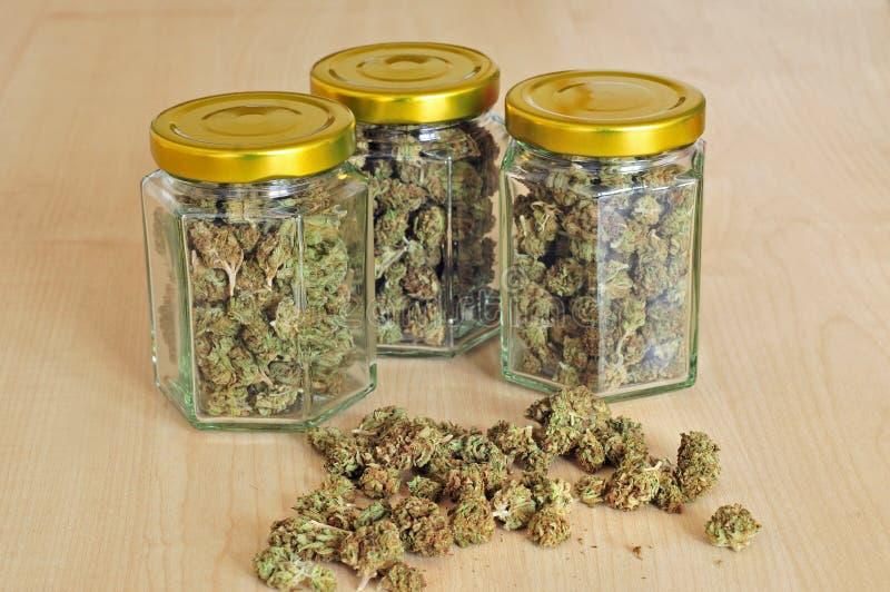 在玻璃瓶子存放的干燥大麻芽 免版税图库摄影