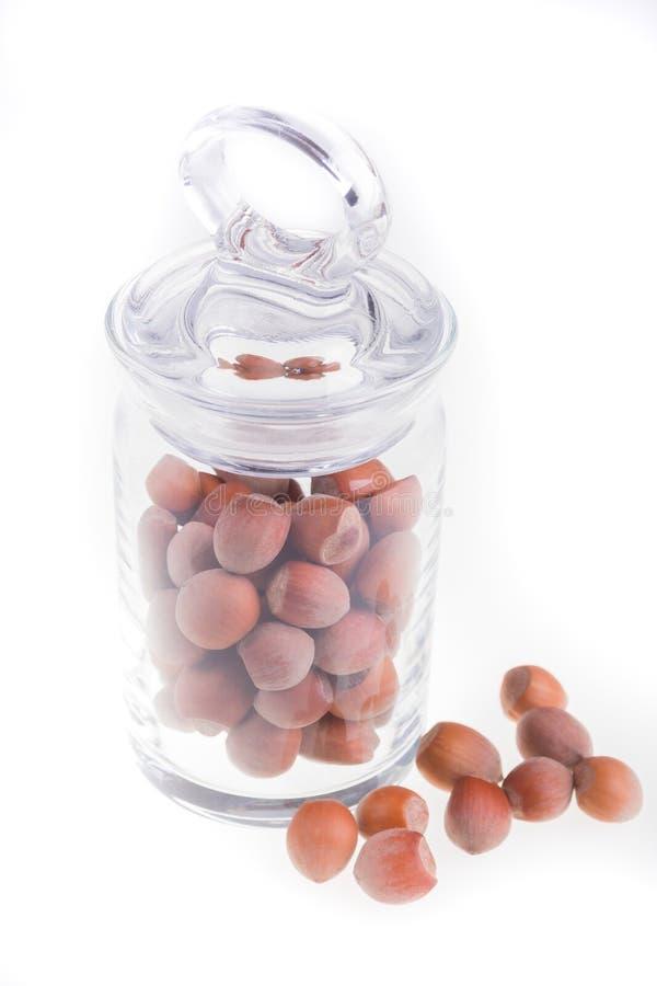 在玻璃瓶子的榛子在白色背景 查出 干螺母 免版税库存图片