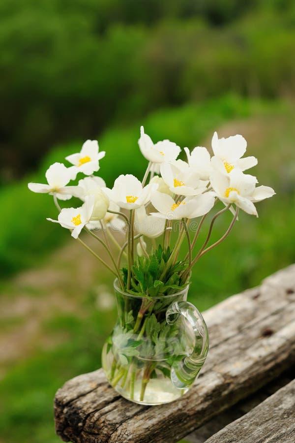 在玻璃瓶子的白色银莲花属在老长木凳 图库摄影