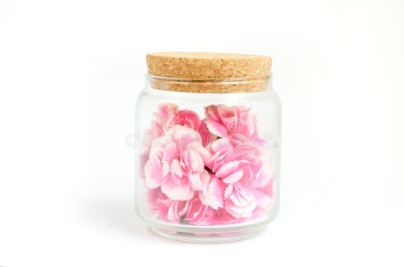 在玻璃瓶孤立里面的桃红色花在与工作道路的白色 免版税库存照片