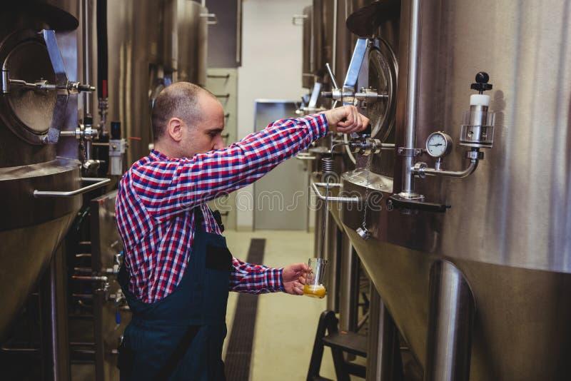 在玻璃的制造商倾吐的啤酒在啤酒厂 免版税图库摄影