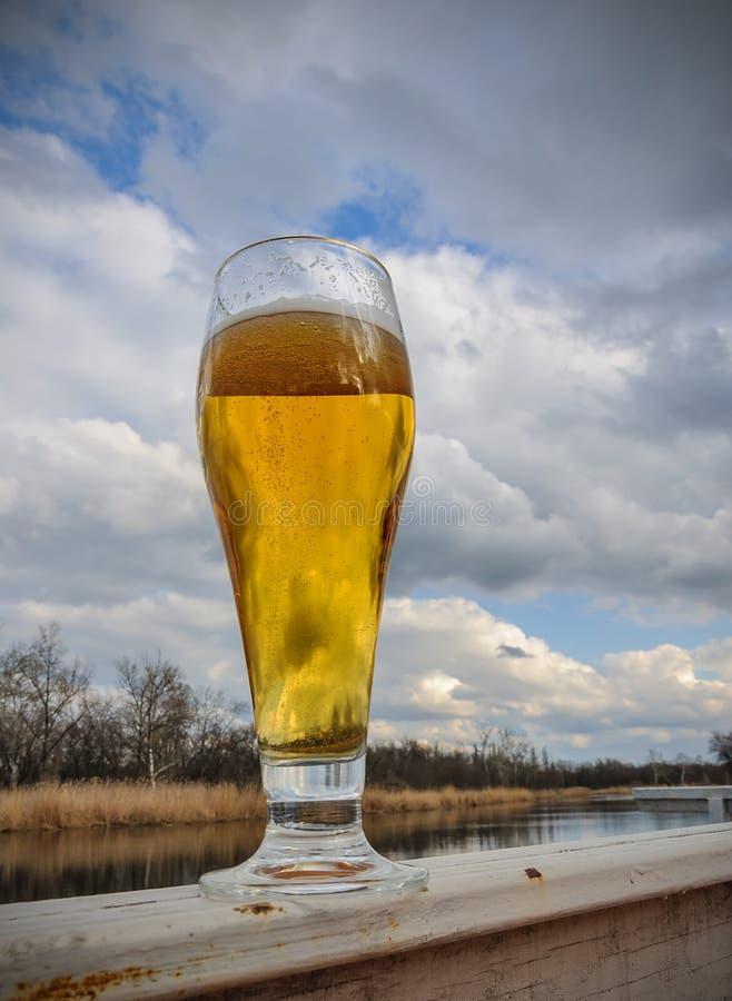 在玻璃的啤酒在反对蓝天和云彩的木桌上在与bokeh的自然本底 免版税库存图片