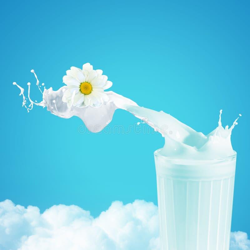 在玻璃的新鲜的牛奶 库存照片