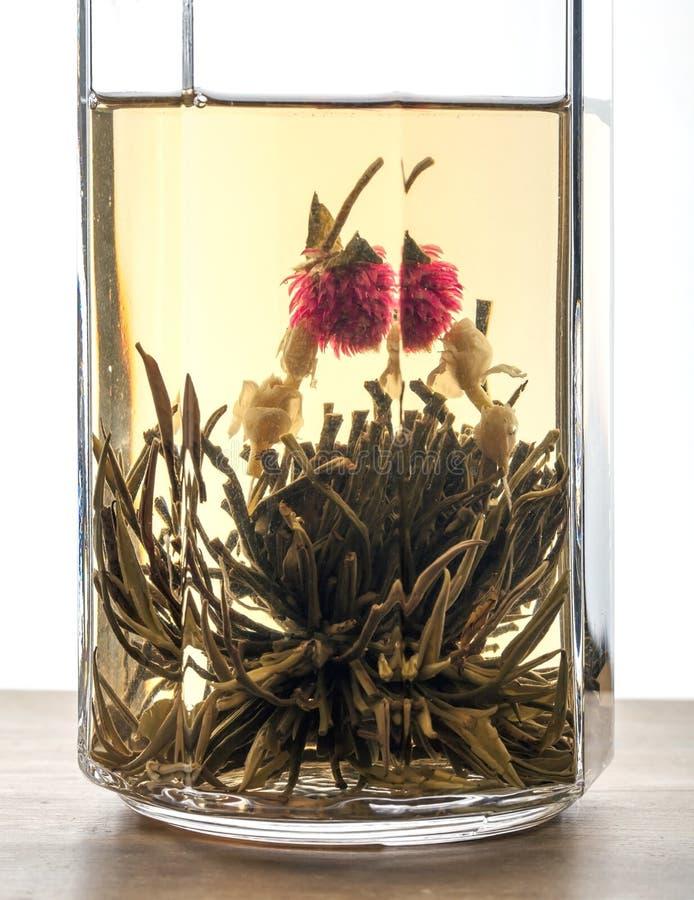 在玻璃的绿色中国花茶 免版税图库摄影