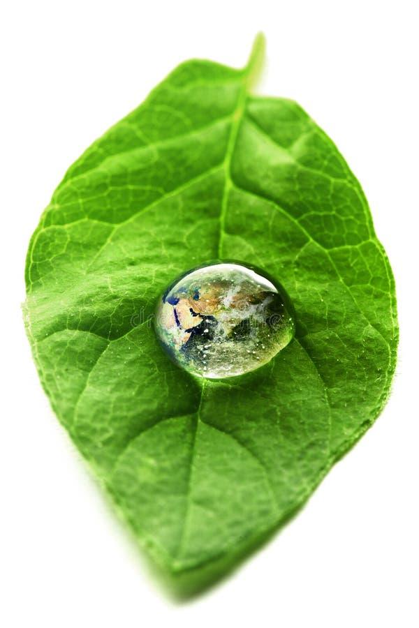 在水滴的世界  免版税库存照片