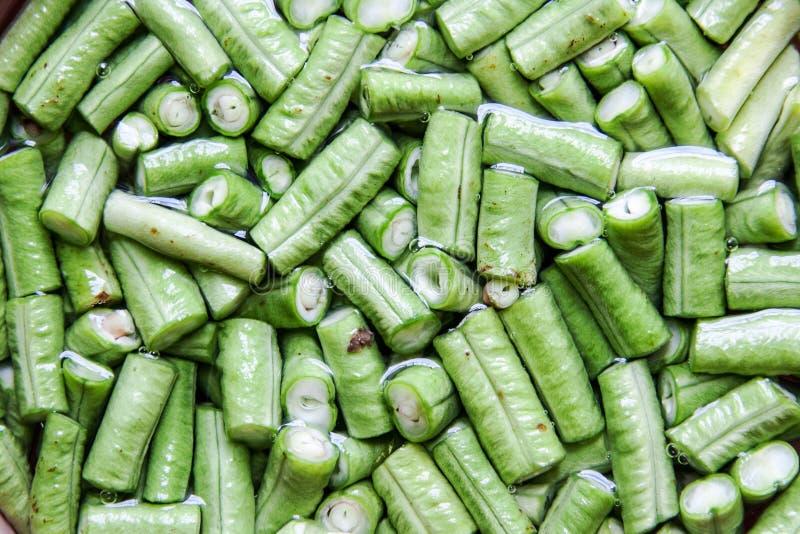 在水的新绿色豇豆幻灯片 免版税库存照片