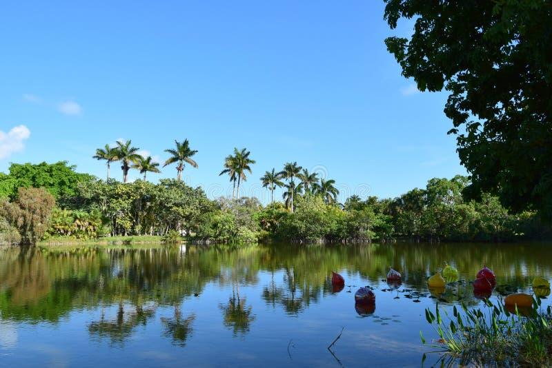 在水的气球与棕榈树 免版税图库摄影
