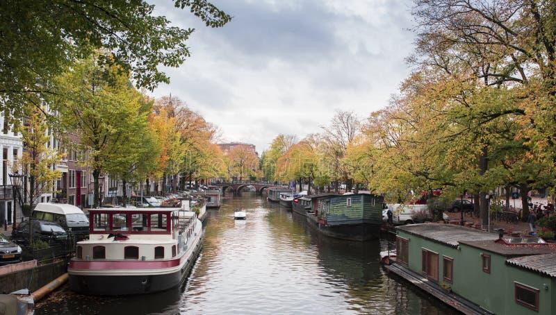 在他们的秋天颜色的美丽的树沿一条运河在阿姆斯特丹 免版税库存照片