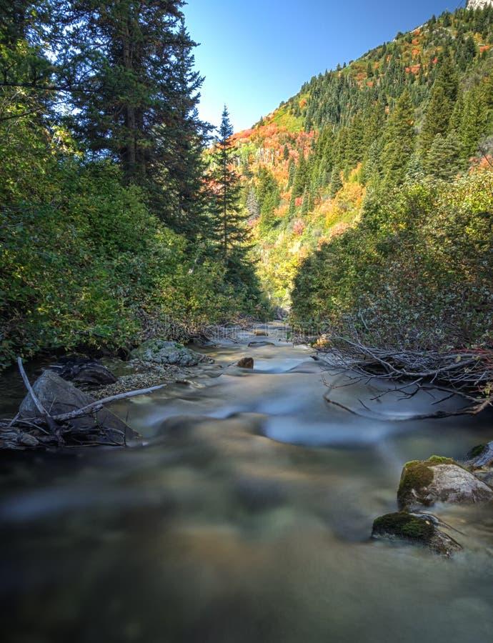 在水的秋天颜色 免版税库存图片