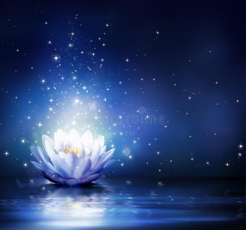 在水的蓝色的不可思议的花 皇族释放例证