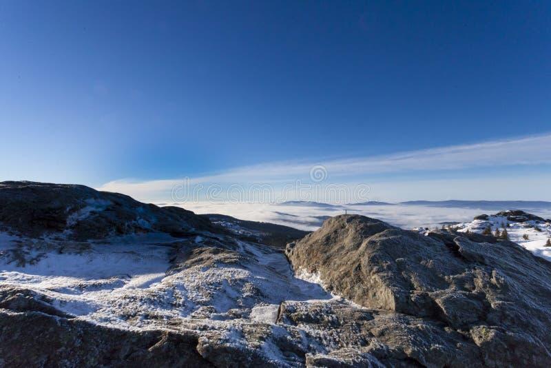在更总的阿尔伯的冬天晴天在巴伐利亚 免版税库存图片