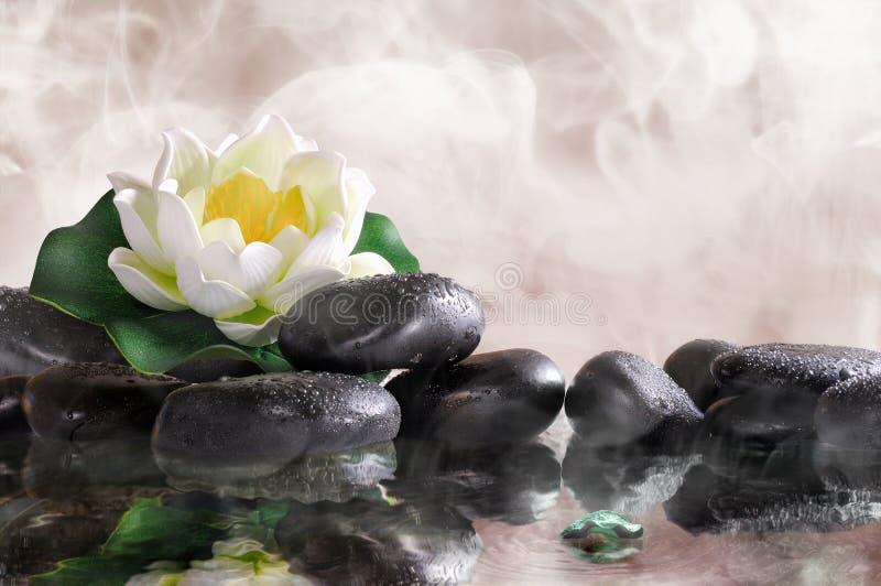 在黑石头的荷花与水和蒸气 图库摄影