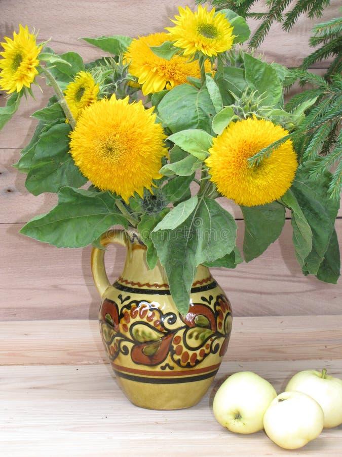 在水罐的向日葵 库存图片