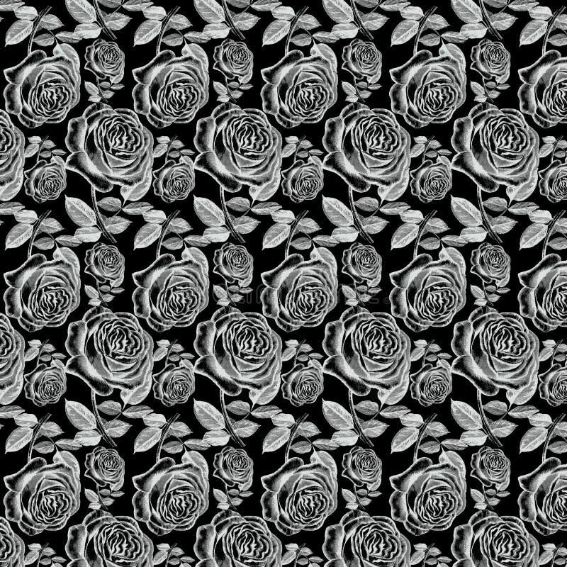在黑背景的古色古香的白色葡萄酒玫瑰 向量例证