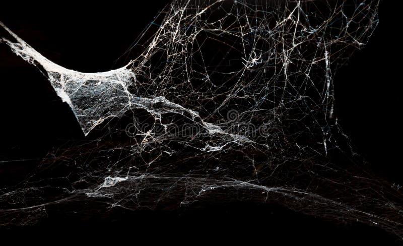 在黑背景的抽象Spiderweb 免版税图库摄影