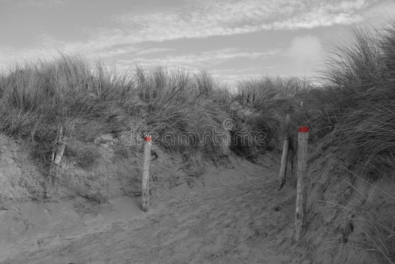 在黑色、白色和红色的沙丘 免版税库存照片