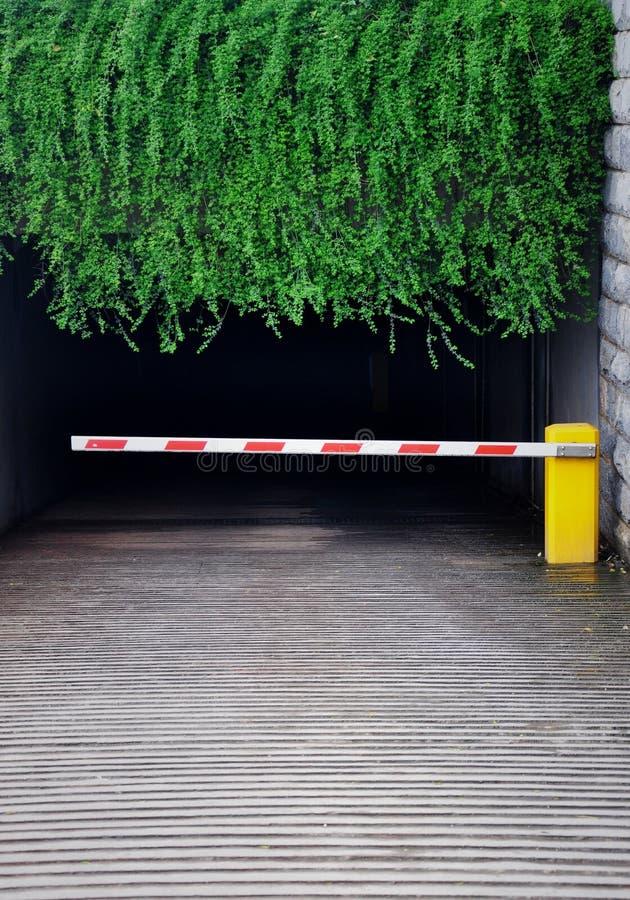 在绿色叶子掩藏的车库 库存照片