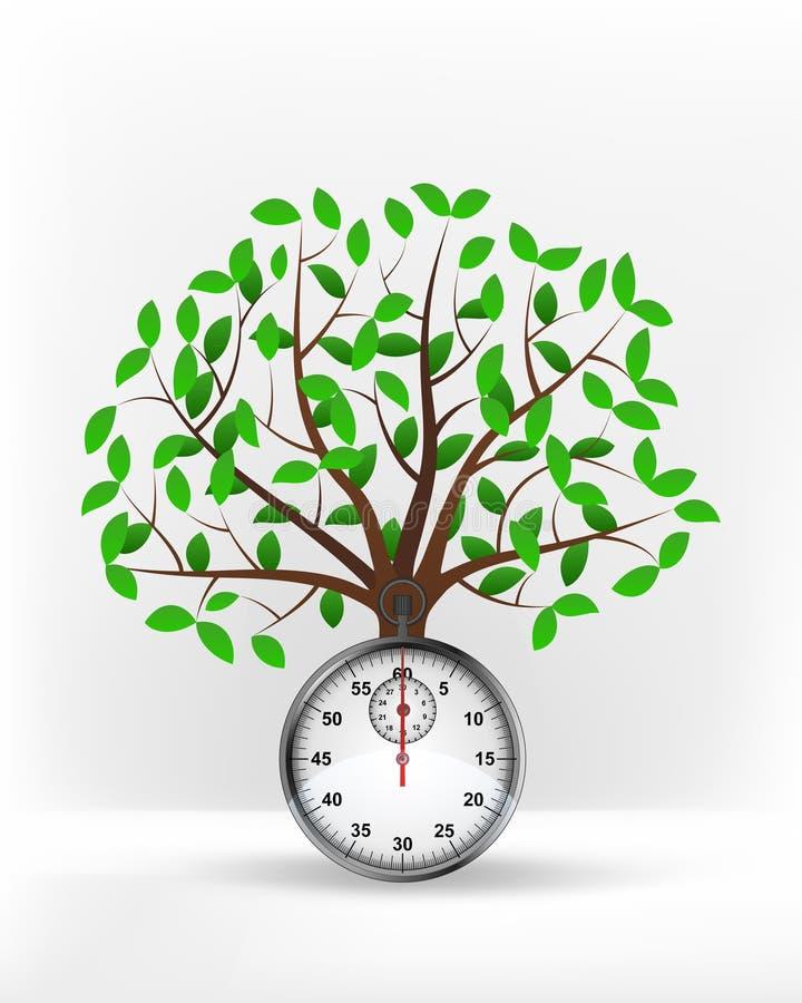 在绿色叶茂盛树传染媒介前面的秒表 向量例证
