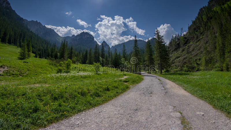在绿色山谷的土路在Tatras 库存照片