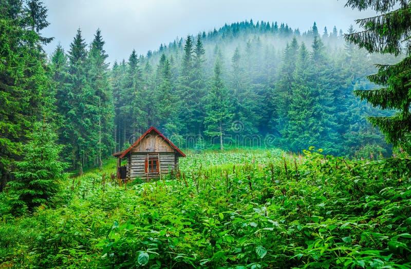 在绿色沼地的木房子碉堡在山森林里 免版税库存照片