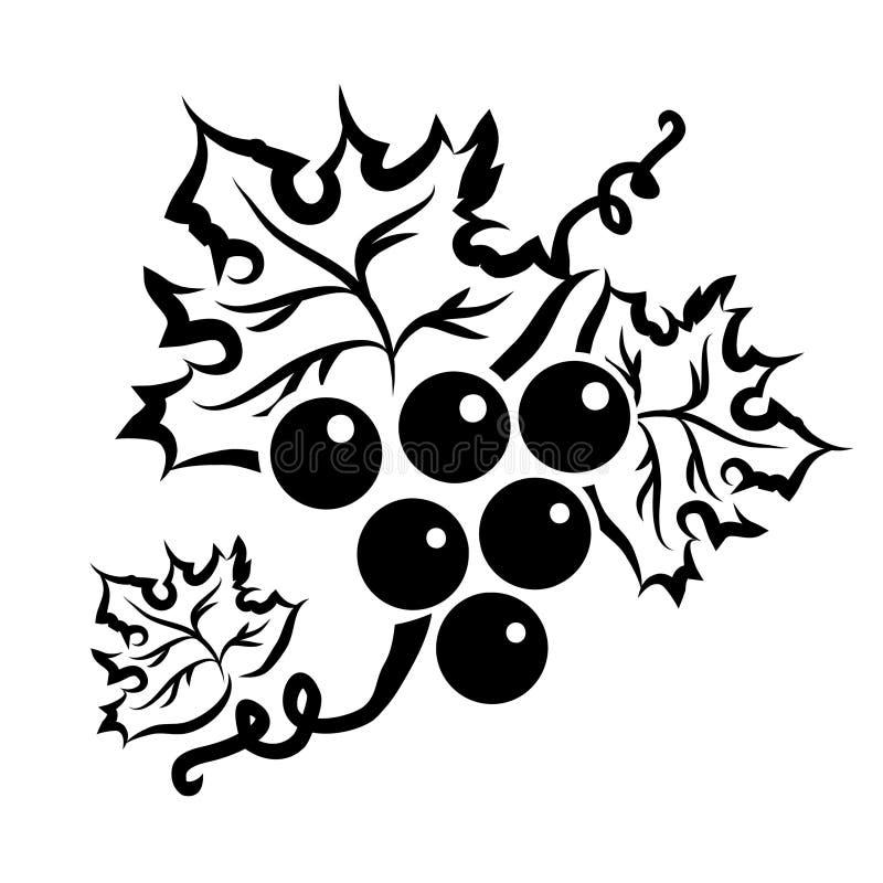 在黑色的葡萄分支 向量例证