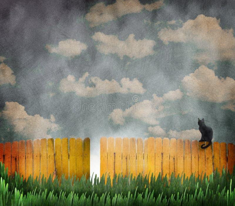 在黄色篱芭的猫 库存图片