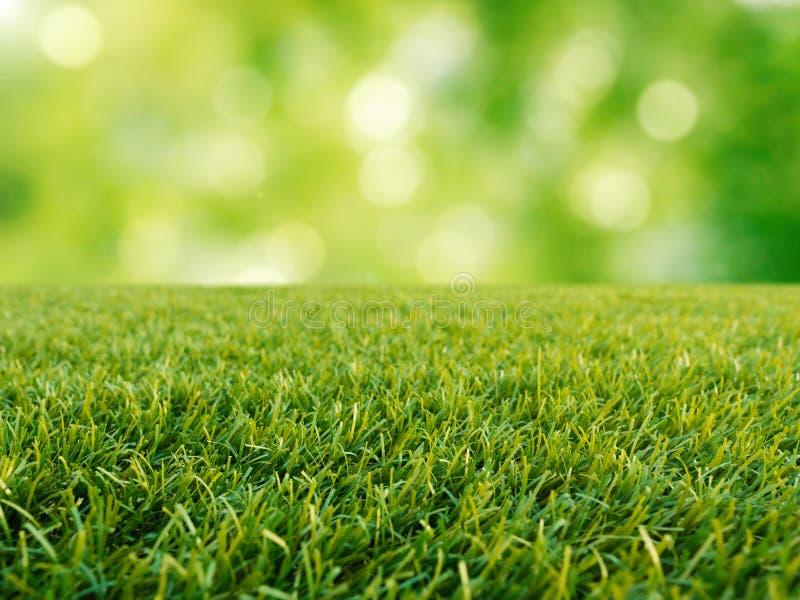 在绿色背景的绿草 库存照片