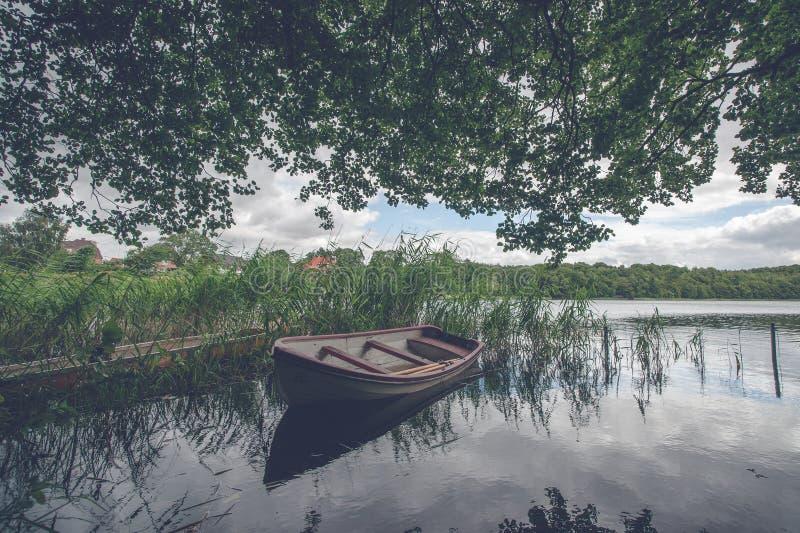 在绿色芦苇中的小船 库存图片