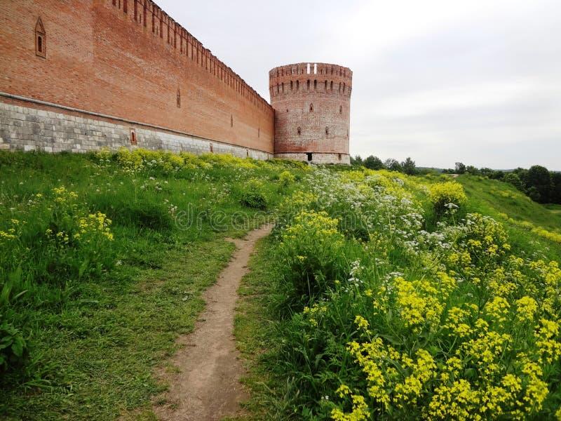 在黄色花中的路在老堡垒 库存照片