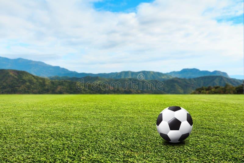 在绿色草坪和天空背景的橄榄球 3D例证或3D 免版税库存图片