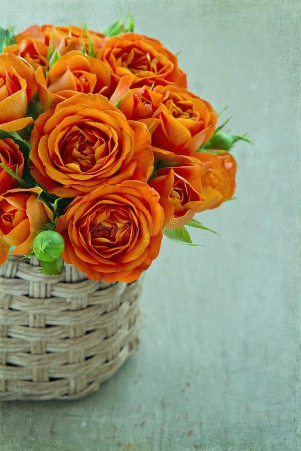 在绿色葡萄酒背景的橙色玫瑰 免版税库存图片