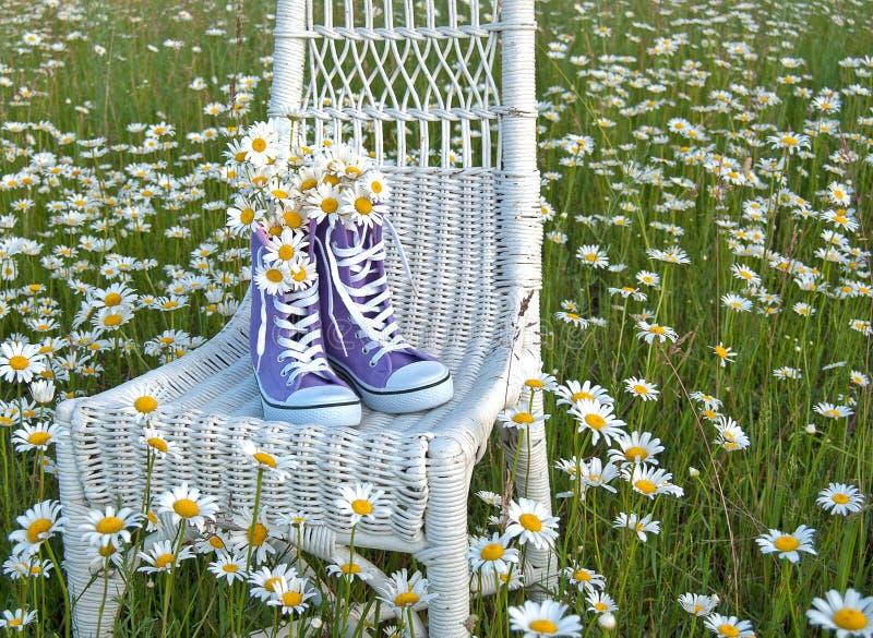 在紫色运动鞋的雏菊花束 免版税库存照片