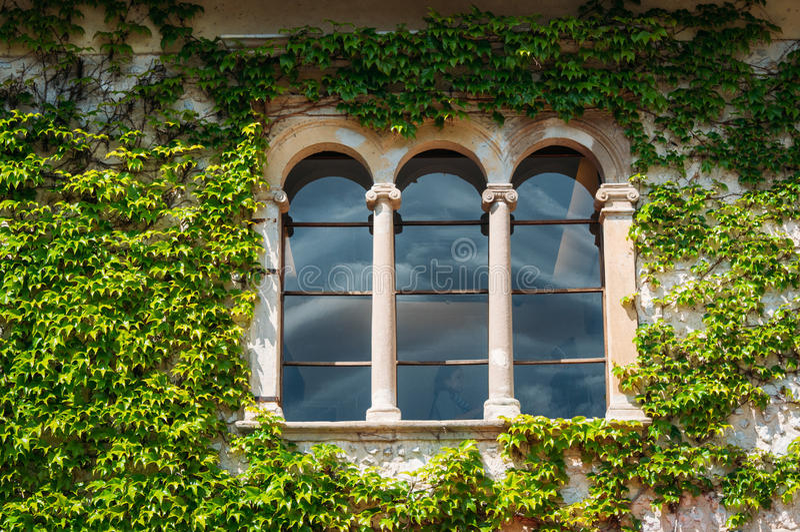 在绿色门面的城堡窗口 免版税库存图片