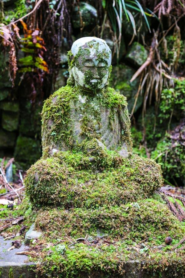 在绿色青苔的古老菩萨雕象在森林里 免版税库存照片