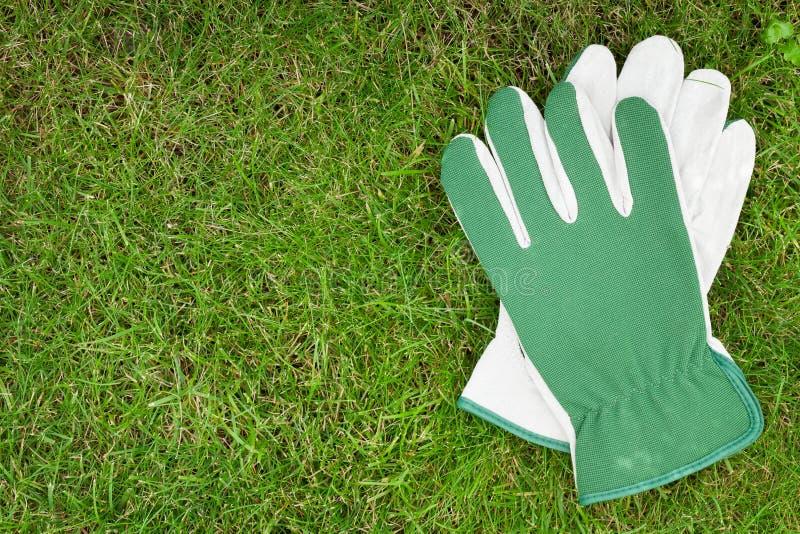 在绿草的庭院手套 免版税库存照片