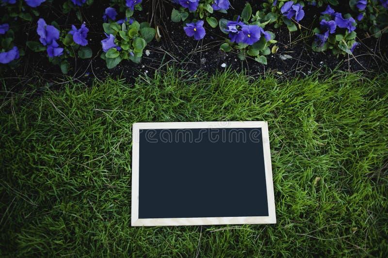 在绿草的空的黑板 图库摄影