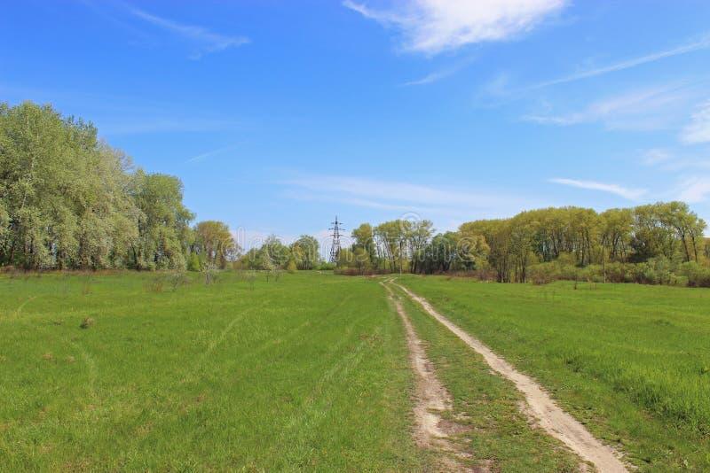 在绿草的路 免版税库存图片