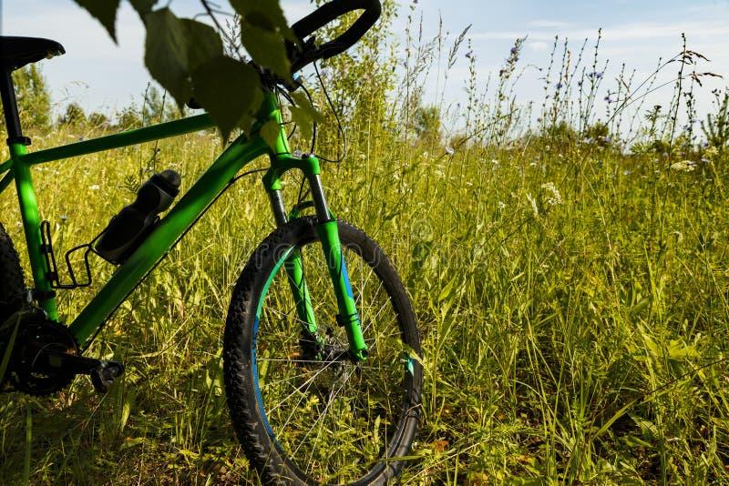 在绿草的登山车轮子 免版税库存照片